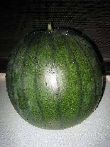 100-Sugar-Baby-Watermelon-Seeds-0-0