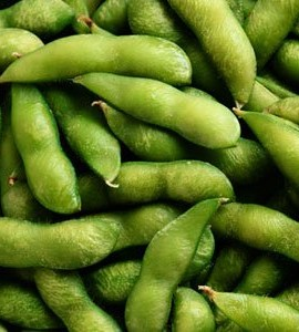 15-Edamame-Midori-Giant-Soybean-Seeds-Fresh-Pack-by-Seeds-and-Things-A-traditional-Edamame-soybean-0-1