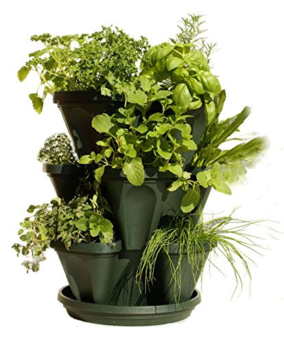 Garden containers amazingly low prices workwithnaturefo