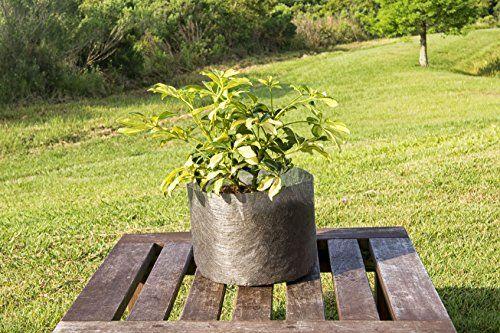 5-Pack-3-Gallon-Fabric-Grow-Bags-10-Round-X-8-Tall-Ruths-Tree-Farm-Fabric-Pots-0-4