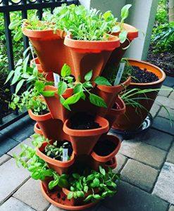 5-Tier-Stackable-Strawberry-Herb-Flower-and-Vegetable-Planter-Vertical-Garden-Indoor-Outdoor-0-1