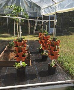 5-Tier-Stackable-Strawberry-Herb-Flower-and-Vegetable-Planter-Vertical-Garden-Indoor-Outdoor-0-3