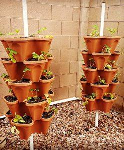 5-Tier-Stackable-Strawberry-Herb-Flower-and-Vegetable-Planter-Vertical-Garden-Indoor-Outdoor-0-4