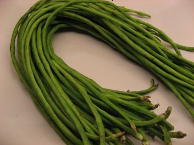 5g Approx 30 Yard Long Green Bean Seeds Quot Spaghetti