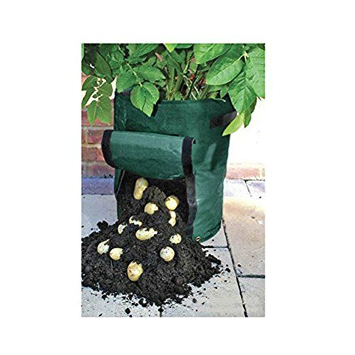 Amgate-Garden-Potato-Grow-Bag-Vegetables-Planter-with-Access-Flap-for-Harvesting-Eco-friendly-Waterproof-Pe-14-Diameter-X-18-Height-0-1