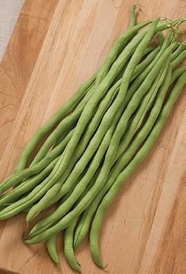 Bean-Pole-Fortex-D34A-Green-100-Open-Pollinated-Seeds-by-Davids-Garden-Seeds-0