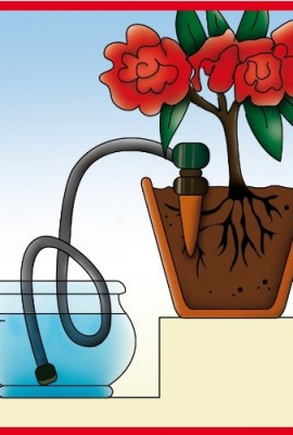Blumat-Self-Watering-Probes-for-Vacation-Watering-set-of-5-0-0