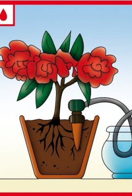 Blumat-Self-Watering-Probes-for-Vacation-Watering-set-of-5-0-2