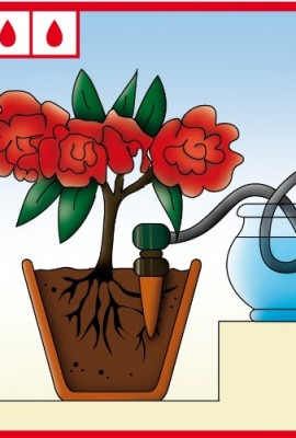 Blumat-Self-Watering-Probes-for-Vacation-Watering-set-of-5-0-3