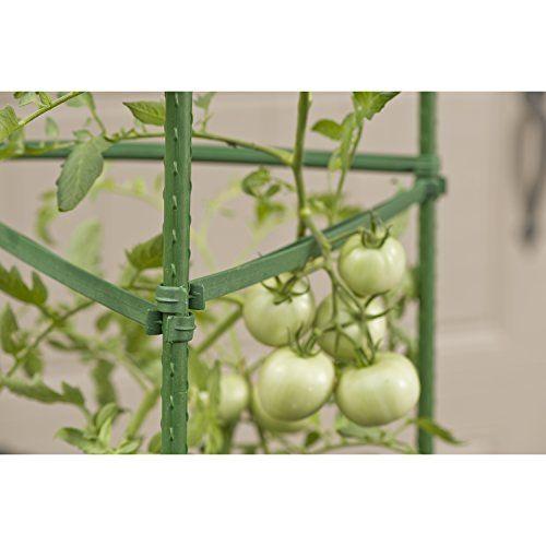 Gardeners-Blue-Ribbon-Ultomato-Tomato-Plant-Cage-0-2