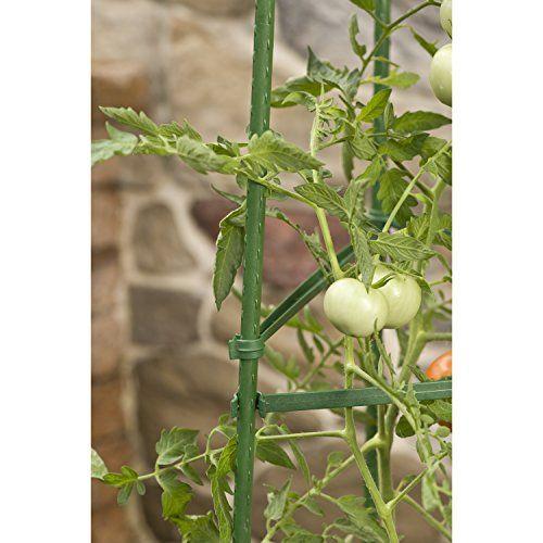 Gardeners-Blue-Ribbon-Ultomato-Tomato-Plant-Cage-0-3