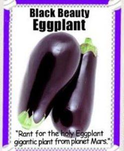 Heirloom-Garden-Vegetable-Seeds-NON-GMO-Easy-Growers-0-5