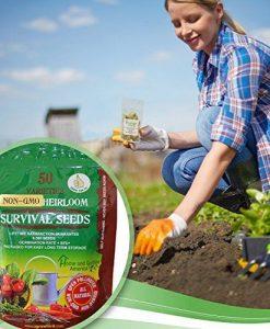Heirloom-Vegetable-Seeds-Bulk-Pack-0-0