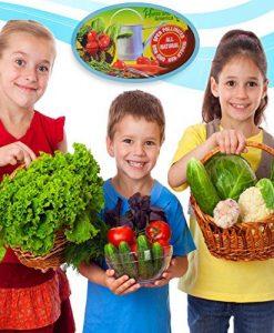Heirloom-Vegetable-Seeds-Bulk-Pack-0-4