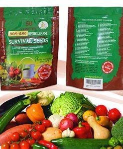 Heirloom-Vegetable-Seeds-Bulk-Pack-0-5