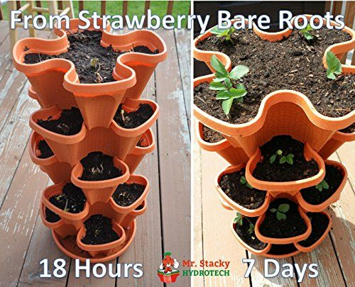 Mr-Stacky-5-Tier-Strawberry-Planter-Pot-5-Pots-0-3