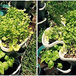 Mr-Stacky-5-Tiered-Vertical-Gardening-Planter-Indoor-Outdoor-0-5