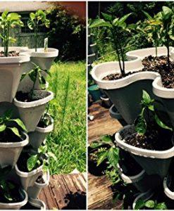 Mr-Stacky-5-Tiered-Vertical-Gardening-Planter-Indoor-Outdoor-0-6