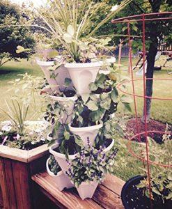 Mr-Stacky-5-Tiered-Vertical-Gardening-Planter-Indoor-Outdoor-0-7