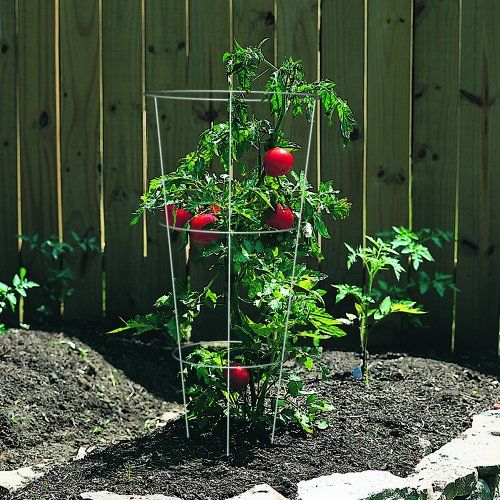 Panacea-89723-Tomato-and-Plant-Support-Cage-Galvanized-Set-of-10-0-0