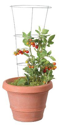 Panacea-Products-Corp-Import-89723-3-Ring-Tomato-Cage-33-Inch-Quantity-25-0