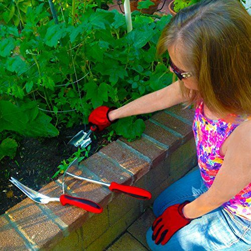 Lasagna gardening for small spaces a layering system for for Big hands for gardening