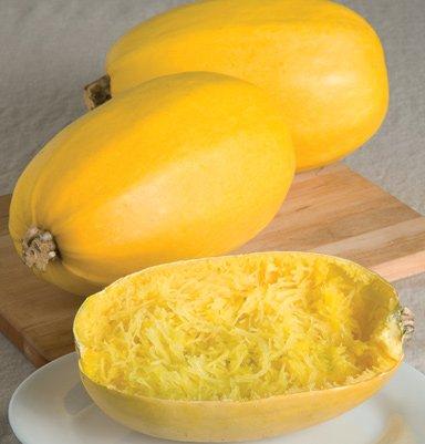 Squash-Vegetable-Spaghetti-Garden-Heirloom-Vegetable-25-Seeds-0-0