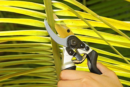 Steel-Bypass-Pruning-Shears-Titanium-Coated-Blades-Premium-Garden-Clippers-Gentle-Giant-Ergonomic-Rotating-Handle-Makes-Clipping-Fruit-Trees-Bushes-Easy-This-Garden-Tool-Helps-Avoid-Carpal-Tunnel-and–0-4