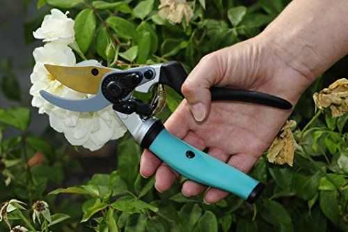 Steel-Bypass-Pruning-Shears-Titanium-Coated-Blades-Premium-Garden-Clippers-Gentle-Giant-Ergonomic-Rotating-Handle-Makes-Clipping-Fruit-Trees-Bushes-Easy-This-Garden-Tool-Helps-Avoid-Carpal-Tunnel-and–0-6