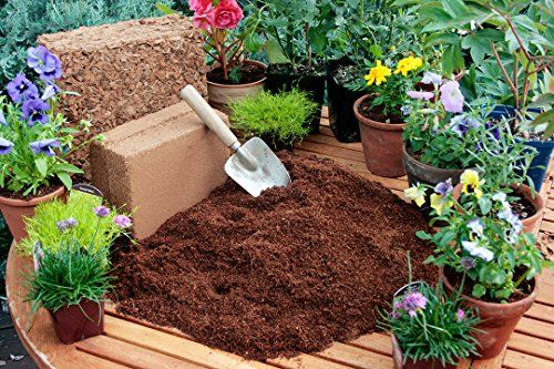SuperMoss-HeirBloom-Succulent-Soil-with-Fertilizer-0-0