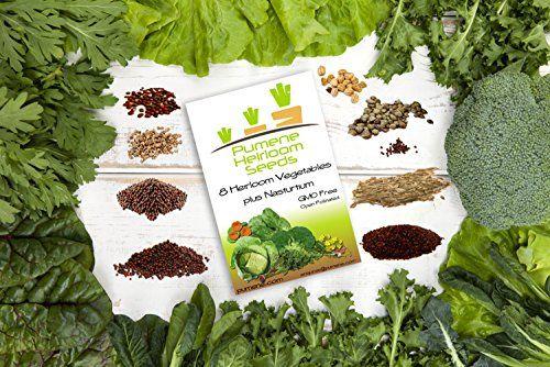 HEIRLOOM VEGETABLE SEEDS AMERICAN GROWN Variety Non GMO Vegetables