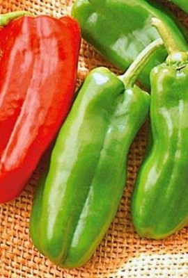 100-Count-Rare-Giant-Sweet-Marconi-Pepper-Seeds-0-1
