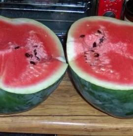 50-FLORIDA-GIANT-WATERMELON-Cannon-Ball-Black-Diamond-Citrullus-Fruit-Seeds-0-4