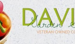 Artichoke-Green-Globe-DGS000654A-Green-50-Heirloom-Seeds-by-Davids-Garden-Seeds-0-4