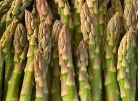 Asparagus-Mary-Washington-FBA-0001A-Green-100-Heirloom-Seeds-by-Davids-Garden-Seeds-0-1
