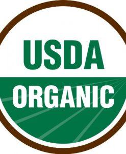 Bean-Bush-Dragons-Tongue-D3175-Purple-100-Organic-Heirloom-Seeds-by-Davids-Garden-Seeds-0-3