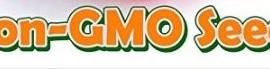 Bean-Lima-Henderson-Bush-D450LIBE-Green-50-Open-Pollinated-Seeds-by-Davids-Garden-Seeds-0-2