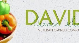Cabbage-Chinese-Minuet-D2901-Green-200-Hybrid-Seeds-by-Davids-Garden-Seeds-0-0