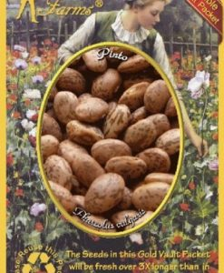 Everwilde-Farms-Pinto-Dry-Bean-Seeds-Gold-Vault-0-0