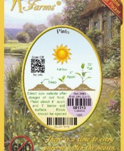 Everwilde-Farms-Pinto-Dry-Bean-Seeds-Gold-Vault-0-1