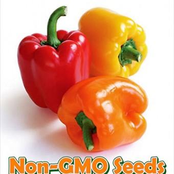 Pea-Sugar-Ann-D559A-Green-200-Organic-Seeds-by-Davids-Garden-Seeds-0-3