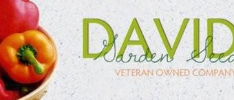 Swiss-Chard-Rhubarb-D702A-Maroon-400-Organic-Seeds-by-Davids-Garden-Seeds-0-1