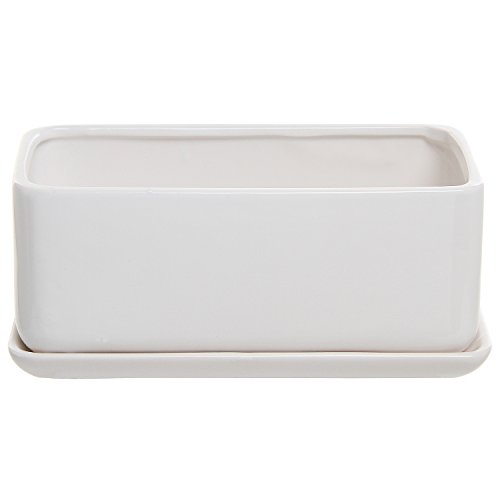 10 Inch White Ceramic Planter