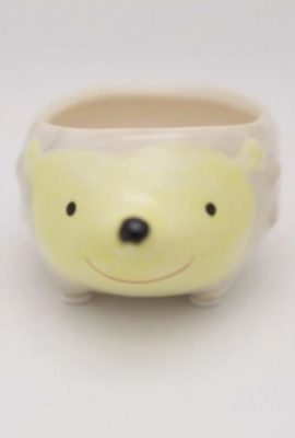 Cute-Hedgehog-Flower-Pot-Mini-Ceramic-Planter-YellowGreen-0-0