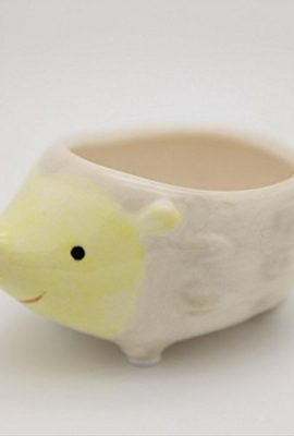 Cute-Hedgehog-Flower-Pot-Mini-Ceramic-Planter-YellowGreen-0-1