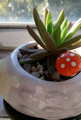Cute-Hedgehog-Flower-Pot-Mini-Ceramic-Planter-YellowGreen-0-4