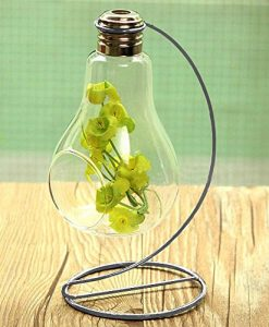 Hanging-Clear-Glass-Bulb-Vase-Air-Plant-Terrarium-Succulent-Planter-Container-w-Silver-Metal-Stand-by-UCQuality-0-0