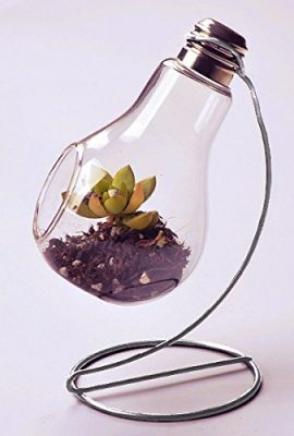 Hanging-Clear-Glass-Bulb-Vase-Air-Plant-Terrarium-Succulent-Planter-Container-w-Silver-Metal-Stand-by-UCQuality-0-1