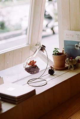 Hanging-Clear-Glass-Bulb-Vase-Air-Plant-Terrarium-Succulent-Planter-Container-w-Silver-Metal-Stand-by-UCQuality-0-2