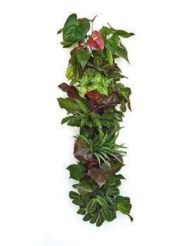 Prudance-Vertical-Wall-Garden-Planter-0-4